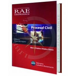 MANUAL DEL LITIGANTE PROCESAL CIVIL